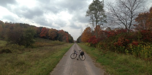 Bike parked with Fall colors
