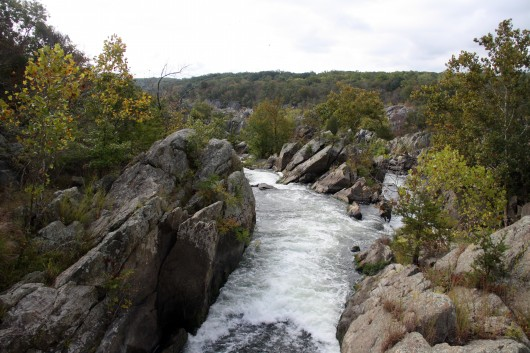 Potomac from Great Falls Outlook