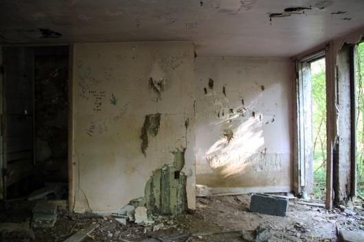 Inside of abandoned house along C&O Canal #1