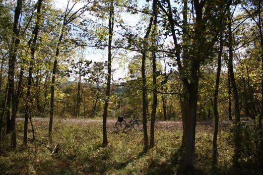 IMG_2793-bike-on-path