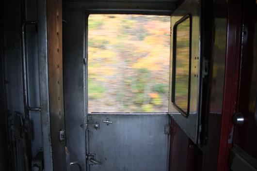 IMG_2899-train-leaves-blur