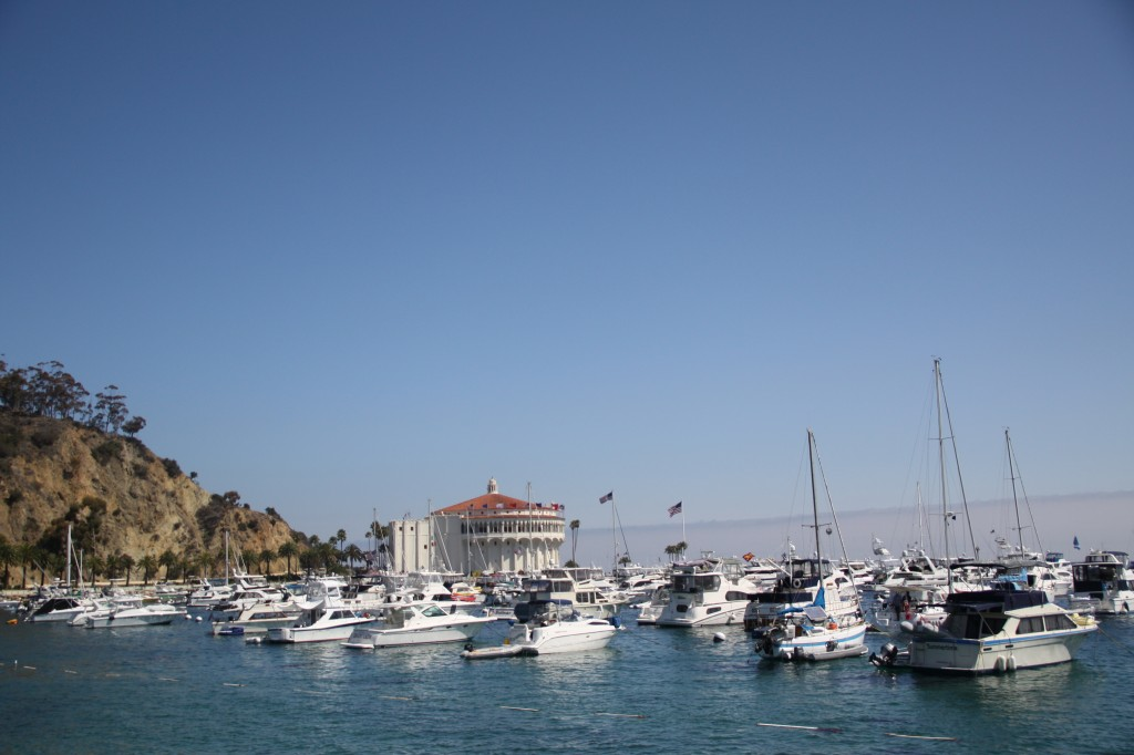 The harbor in Avalon, Catalina Island