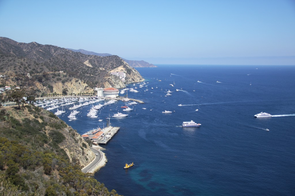 A high-up view of the Avalon Harbor on Catalina Island