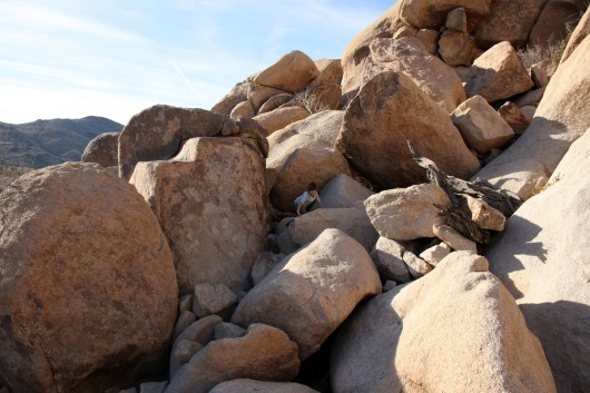 Makena rock scrambling in Joshua Tree