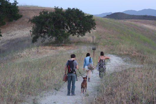 Hiking out of Chesebro Canyon in Agoura Hills, CA